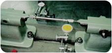 Chevreuil Redressage de précision à Suresnes 92